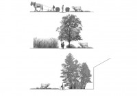 http://www.a-mar-paysage.fr/files/gimgs/th-1_A-mar-Europan 12-coupes.jpg